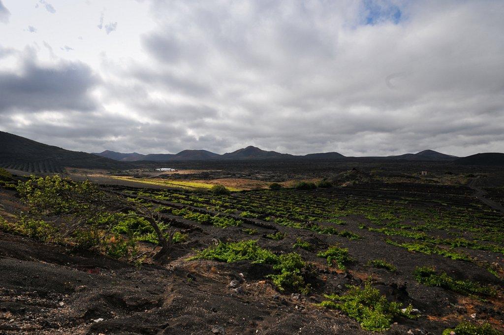 2010 Lanzarote