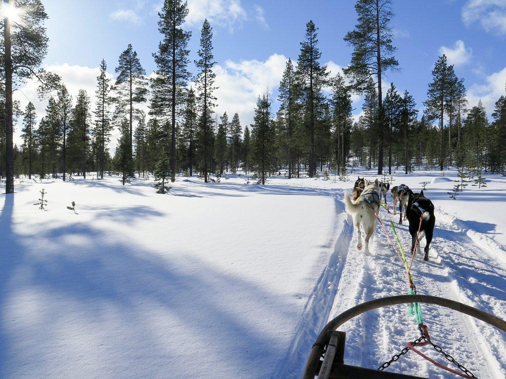 finland-0031.jpg